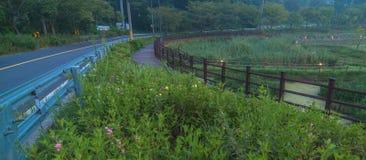 Wiejska droga przy park Zdjęcia Royalty Free