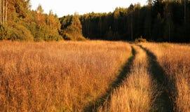 Wiejska droga w drewnie Zdjęcia Royalty Free