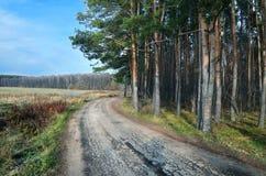 Wiejska droga w jesieni Zdjęcia Stock