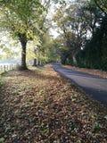 Wiejska droga w jesieni Fotografia Royalty Free