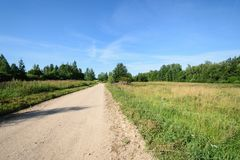 Wiejska droga w lesie Obraz Royalty Free