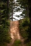 Wiejska droga w lesie Zdjęcia Stock
