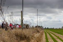 Wiejska Droga w Portugalia z roślinnością na obich stronach 22 pocisków kaliberu grupy biel fotografia royalty free