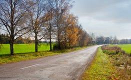Wiejska droga w wczesnej jesieni Fotografia Stock