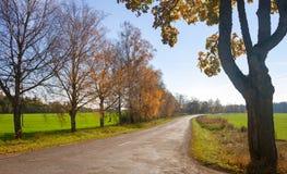 Wiejska droga w wczesnej jesieni Zdjęcie Stock