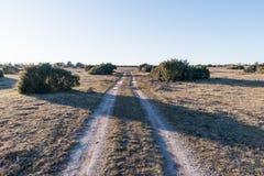 Wiejska droga w wielkim równina krajobrazie Obrazy Stock