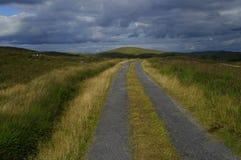 Wiejska droga W zachodu korku Irlandia zdjęcie royalty free