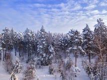 Wiejska droga w zim lasowych drzewach w śniegu, niebieskie niebo z chmurami na tle widok z lotu ptaka obrazy stock