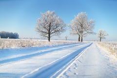 Wiejska droga w zima mrozie fotografia stock