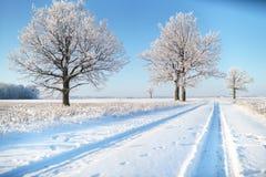 Wiejska droga w zima mrozie obraz royalty free