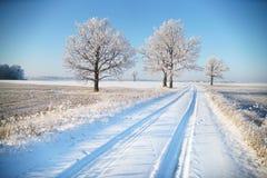 Wiejska droga w zima mrozie zdjęcie royalty free