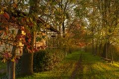 Wiejska droga w zmierzchu na jesieni Fotografia Royalty Free
