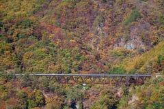 Wiejska droga z jesieni drzewem Obraz Stock