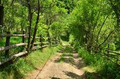 Wiejska droga z ogrodzeniem Obrazy Royalty Free