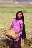 WIEJSKA dziewczyna - wioski życie INDIA zdjęcia royalty free