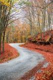 Wiejska jesieni droga Obraz Stock