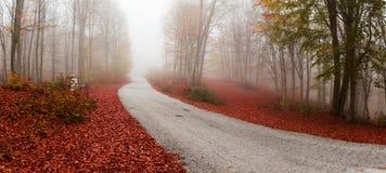 Wiejska jesieni droga Zdjęcia Royalty Free