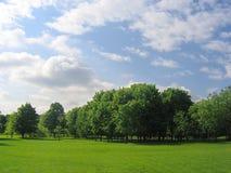 wiejska krajobrazowa tło natura Obraz Royalty Free