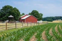 Wiejska kraju Jork okręgu administracyjnego Pennsylwania ziemia uprawna na letnim dniu, obrazy stock