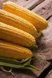 Wiejska kukurudza Fotografia Stock