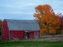 Wiejska Maine scena z Nieociosaną Czerwoną stajnią zdjęcia stock