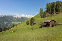 Wiejska scena od gospodarstwa rolnego wśród halnego paśnika w Ahrntal, Ita Zdjęcie Stock