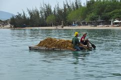 Wiejska scena w Wietnam zdjęcie stock