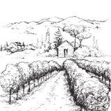 Wiejska scena z domów, winnicy i wzgórzy nakreśleniem, ilustracja wektor