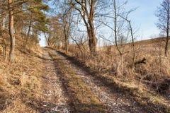 Wiejska trasa od lasowej krawędzi las Ciężki Wiosna w lesie Fotografia Stock