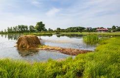 Wiejska Virginia rolnictwa ziemia uprawna Obraz Stock