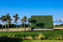 Wiejska wieś Viñales dolina, Kuba fotografia stock
