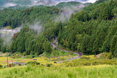 Wiejska wietrzna droga wśród ryż poly i lasowego widoku od above zdjęcia stock