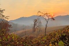 Wiejska wschód słońca scena Zdjęcia Royalty Free