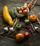 Wiejski życie z warzywami wciąż Obraz Stock