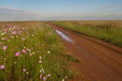 Wiejski afrykanina krajobraz Gauteng prowincja Południowa Afryka Fotografia Stock