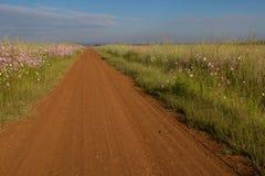 Wiejski afrykanina krajobraz Gauteng prowincja Południowa Afryka Obrazy Royalty Free