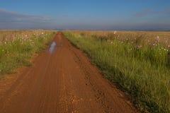 Wiejski afrykanina krajobraz Gauteng prowincja Południowa Afryka Obraz Royalty Free