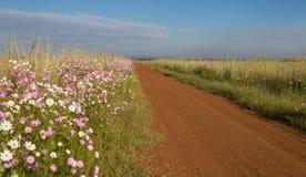 Wiejski afrykanina krajobraz Gauteng prowincja Południowa Afryka Zdjęcia Royalty Free