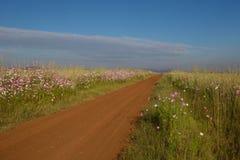 Wiejski afrykanina krajobraz Gauteng prowincja Południowa Afryka Fotografia Royalty Free