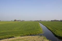 wiejski agrarny krajobraz nl Zdjęcia Royalty Free