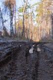 Wiejski brudzi uszkadzającą drogę z błotami i dziurami zdjęcie stock