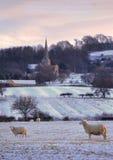 Wiejski Cotswolds w zimie Zdjęcia Stock