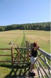 wiejski footpath angielski krajobraz Obrazy Stock