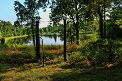Wiejski jezioro w drewnach Zdjęcia Stock