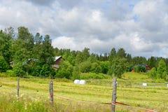 Wiejski krajobraz Zdjęcie Stock