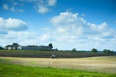 Wiejski krajobraz fotografia stock