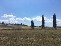 Wiejski krajobraz lat pola Tuscany Zdjęcia Royalty Free