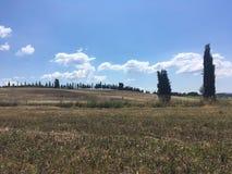 Wiejski krajobraz lat pola Tuscany Zdjęcie Stock