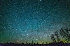 Wiejski krajobraz przy nocą z drzewami i gwiazdami Zdjęcia Royalty Free