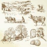 Wiejski krajobraz, rolnictwo Obraz Royalty Free